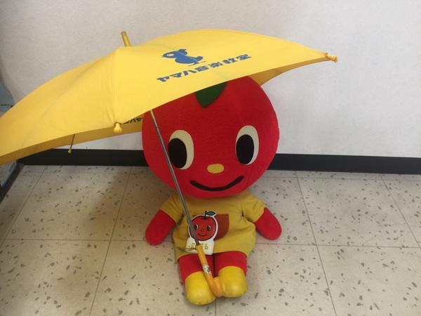台風第12号接近によるレッスン予定です。